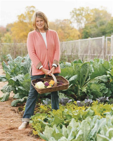 Cantitoe Corners Martha S Vegetable Garden Martha Stewart Martha Stewart Vegetable Garden
