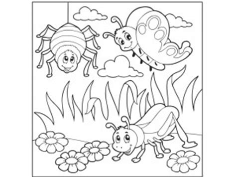 preschool coloring pages bugs bug coloring pages for preschool