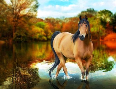 wallpaper for desktop of horses free horse screensavers and wallpapers wallpaper cave
