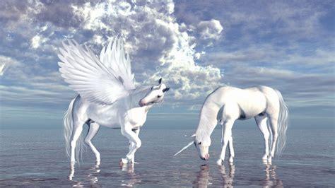 imagenes de pegasos y unicornios reales banco de im 193 genes unicornio y pegaso a orillas del mar