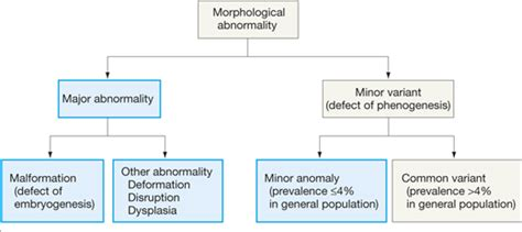 pattern classification for finding facial growth abnormalities prevalence and patterns of morphological abnormalities in