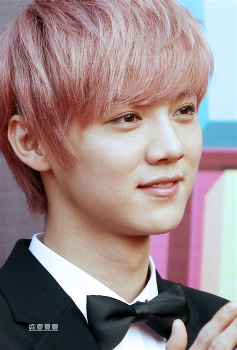 pink luhan luhan exo pink hair www imgkid com the image kid has it