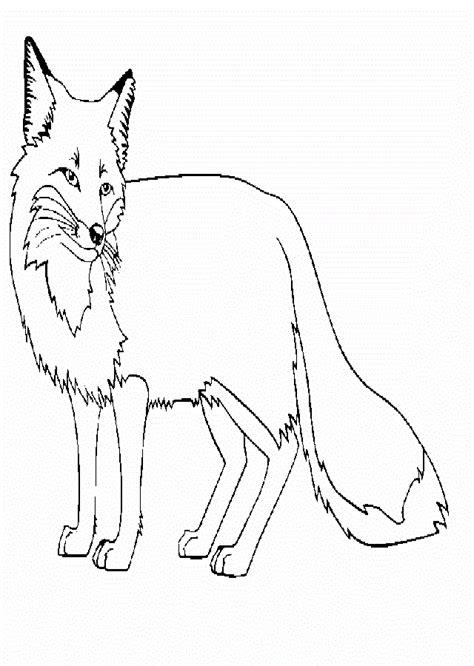 imagenes para dibujar de zorros zorros para colorear dibujos para colorear