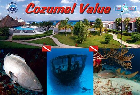 cozumel dive resorts casa mar resort cozumel mexico scuba diving vacations