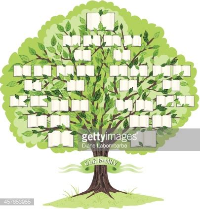 character tree template family tree template vector getty images
