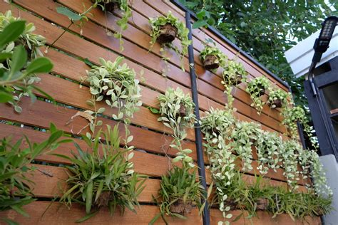 make indoor vertical gardening convenient and garden