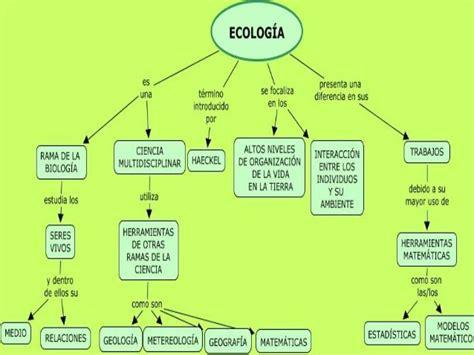 ecolog a y medio ambiente en el blog verde blog sobre la ecologia y medio ambiente