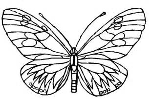 color pictures of butterflies free coloring pages of paint butterflies