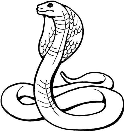 Coloring Pages Snake printable snake coloring pages coloring me