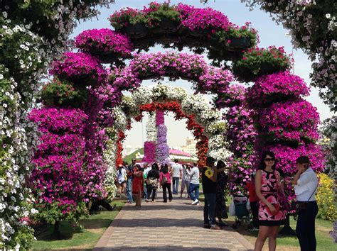 princess ohio swing miracle flower show in dubai princess jazz s great