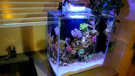 fluval edge marine light fluval edge 12g nano reef youtube