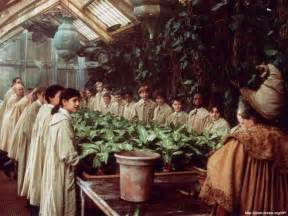 herbology harry potter wiki