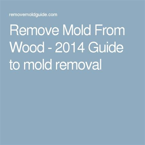 How To Remove Mold From Wood Furniture by 1000 Ideas About Remove Mold On Cleaning Mold