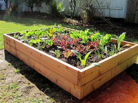 at home at home diy raised bed vegetable garden