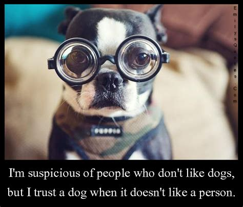 i dont like dogs i m suspicious of who don t like dogs but i trust a when it doesn t