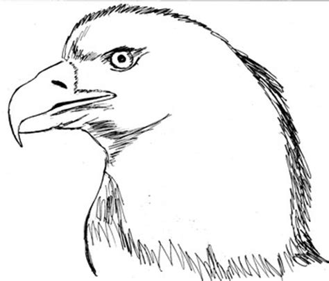 seni budaya smanio sketsa sebagai awal berkarya seni rupa