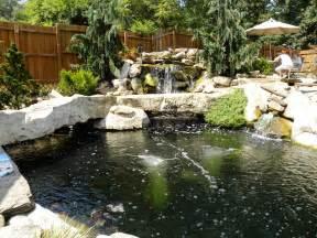 regina s garden koi pond tour pond 2