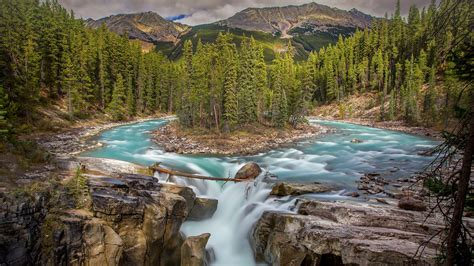 sunwapta falls sunwapta falls jasper national park alberta canada