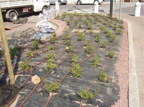 progettazione irrigazione giardino progettare impianto irrigazione giardino giardini