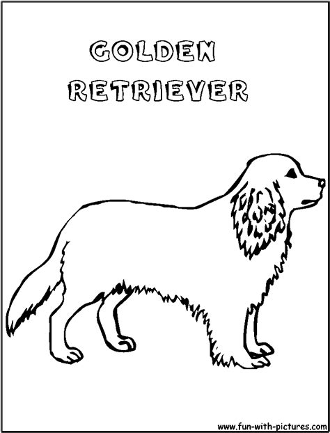 coloring pages of golden retriever puppies golden retriever puppy coloring pages coloring pages