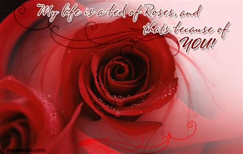 bed of roses meaning flower card romantic quotes quotesgram