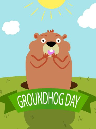groundhog day 2016 rundangerously happy groundhog day 2016