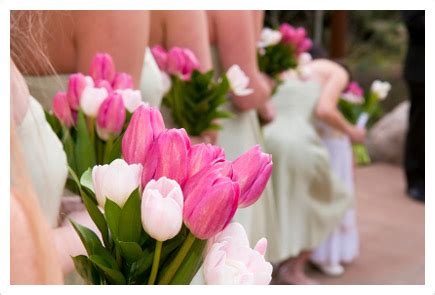 Wedding Flowers On A Budget by Wedding Flowers On A Budget Archives The Wedding Specialists