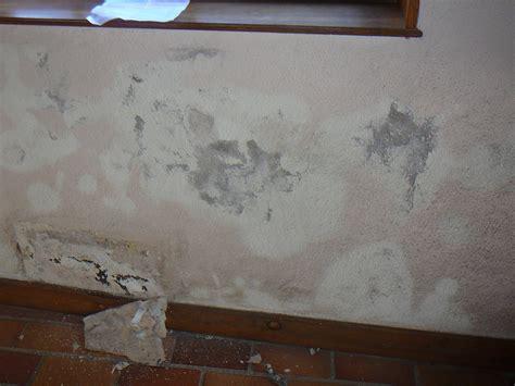 mur humide traitement traitement contre l humidit 233 des murs de votre maison roanne loire