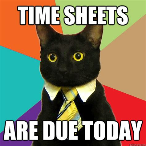 Office Cat Meme - time sheets are due today business cat quickmeme