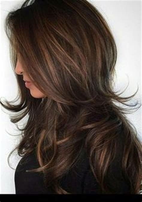 Types Of Highlights For Brown Hair caramel highlights for hair types light brown