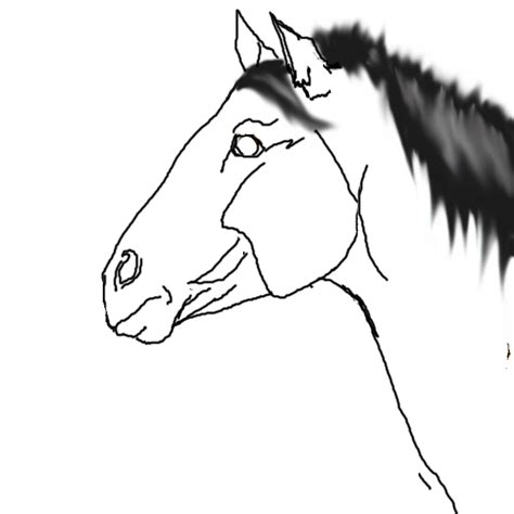 horse templates for photoshop horse profile template by tao yingarrani on deviantart
