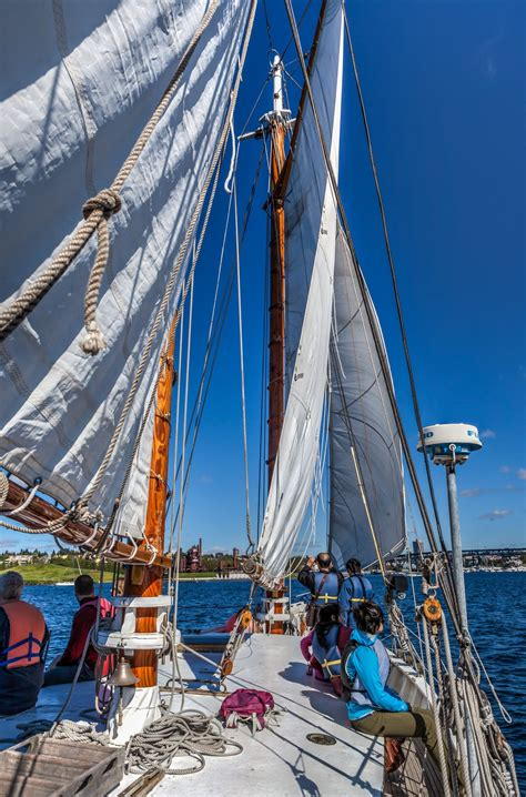 sailing boat union take a free sailing trip on lake union in seattle gate