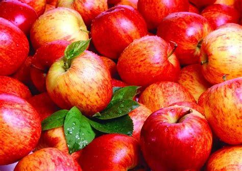 alimenti colite spastica colite spastica dieta diete e malattie disturbi intestino