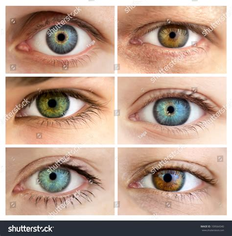 determining eye color set 6 real different open stock photo 109564340