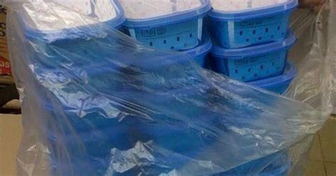 Tempat Makan Kotak Makan Plastik Karakter Disney 1l promotional waterbottles tablewares jual grosir kotak box makan an plastik tempat makan