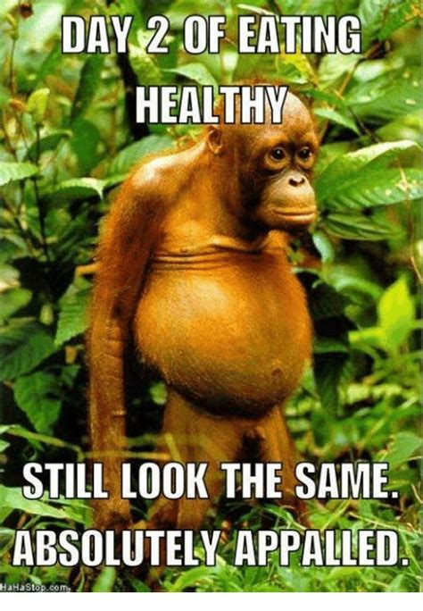 Healthy Food Memes - 15 hilarious memes about being healthy that are real af