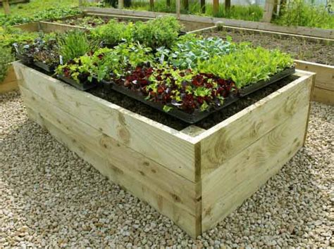 raised vegetable garden beds kits premier raised garden beds for vegetable gardening