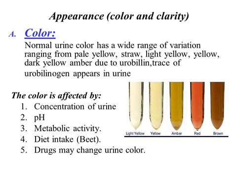 beets urine color urine analysis ppt