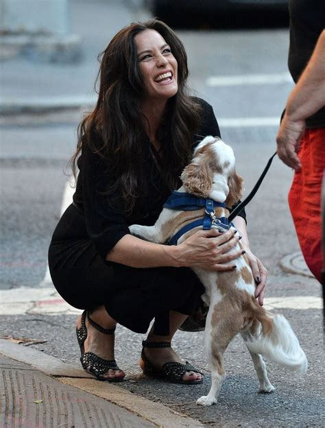 play with puppies nyc liv photos photos liv with in nyc zimbio