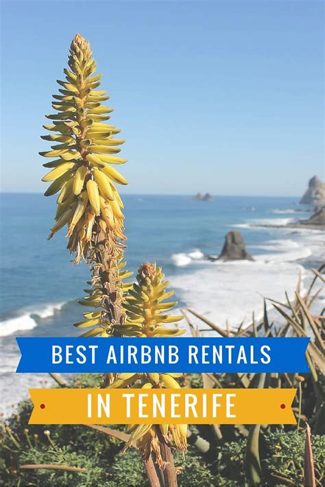 top airbnb rentals airbnb rentals in tenerife get 22 coupon for first booking