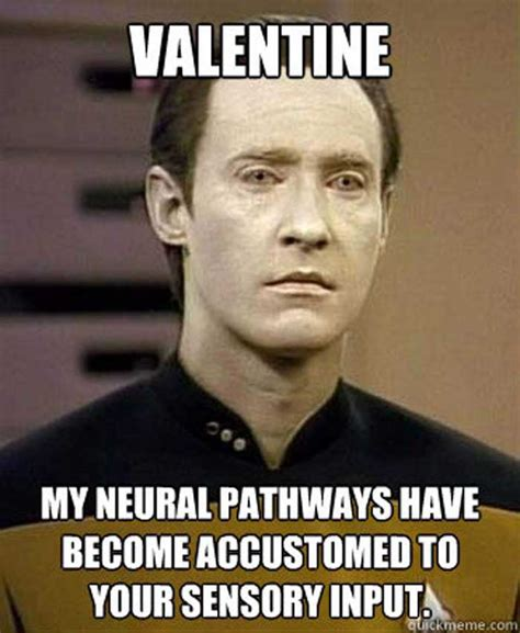 Valentine Memes - valentine funny meme www imgkid com the image kid has it