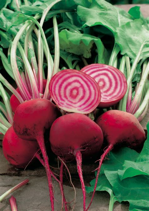 beetroot candy stripe pohlmans phone