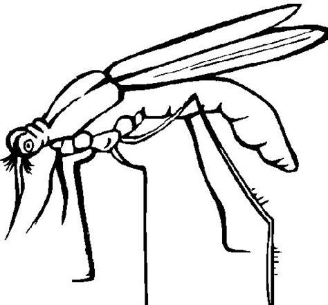 imagenes de viros a lapiz dibujo de mosquito para colorear dibujos net