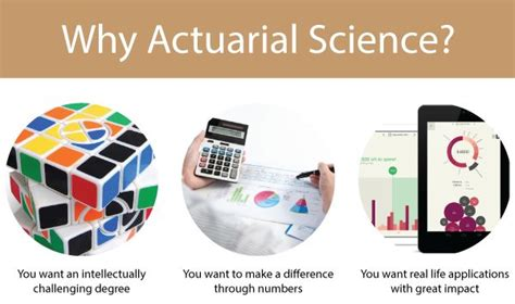 Mba In Actuarial Science by 16 Best Tiny Tots Images On Infants And