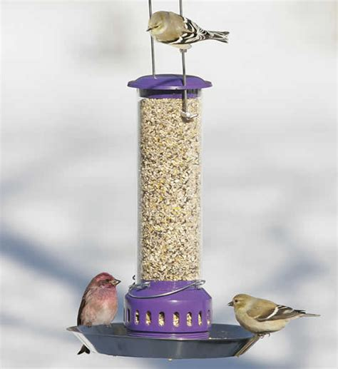 duncraft com all food bird feeder