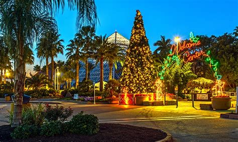 festival of lights galveston reviews moody gardens in galveston tx livingsocial