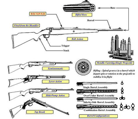 yii different layout for action firearms guides importation verification of firearms