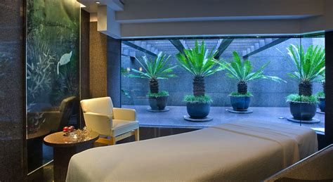 spa decor for home home spa design organics home spa design dzuls interiors