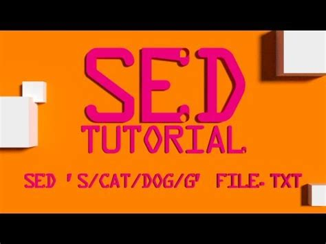 sed count sed numbering lines in a file linux shell tutorial bash