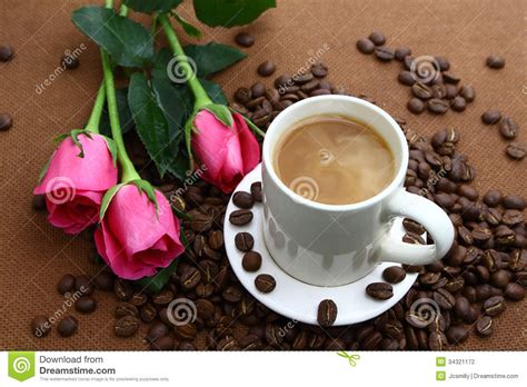 Pink Rose Black Coffe Cup And Coffee Beans Stock Photo   Image: 34321172